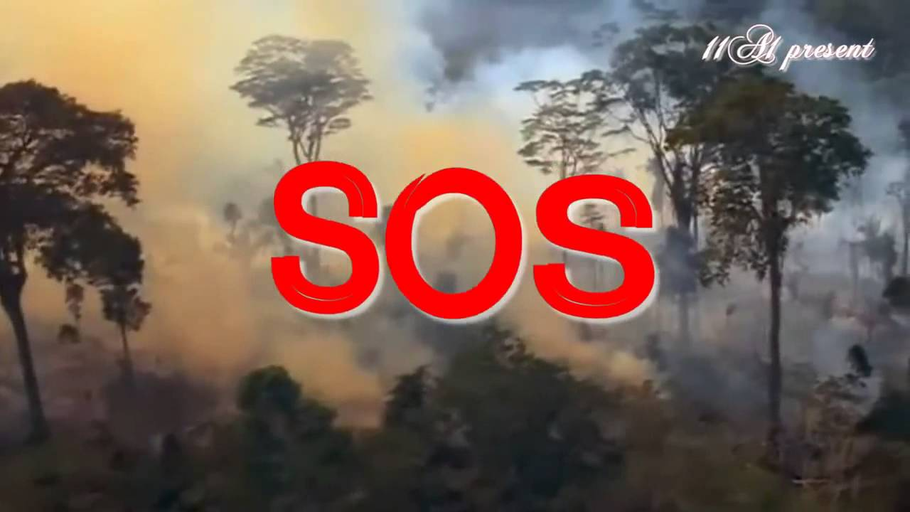 Tình trạng ô nhiễm không khí ở Hà Nội đang ngày càng nghiêm trọng